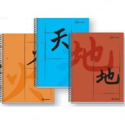 CUADERNO-297-T-PVC-ESSENTIAL-84-HS-RAY